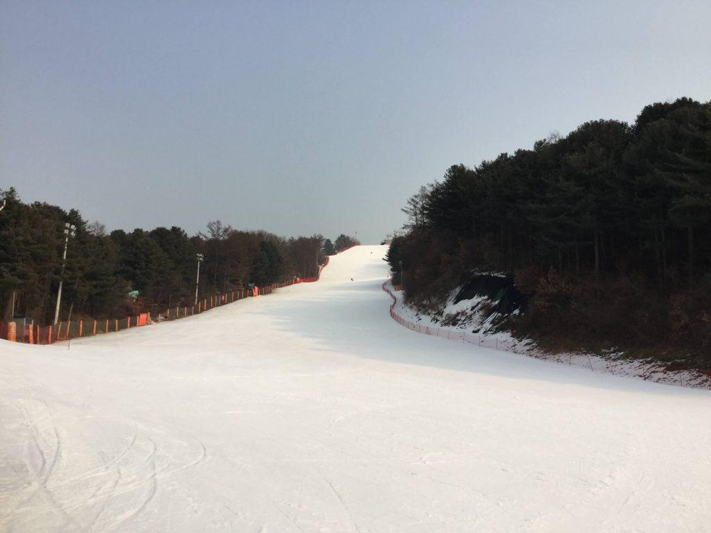 Bears Town ski slopes