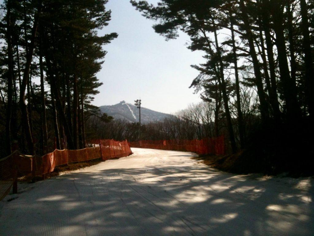 Ski slopes at Yongpyong Resort
