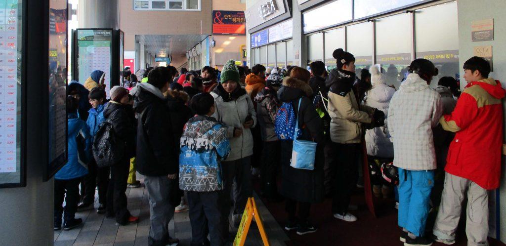 Busy lines at Vivaldi Park