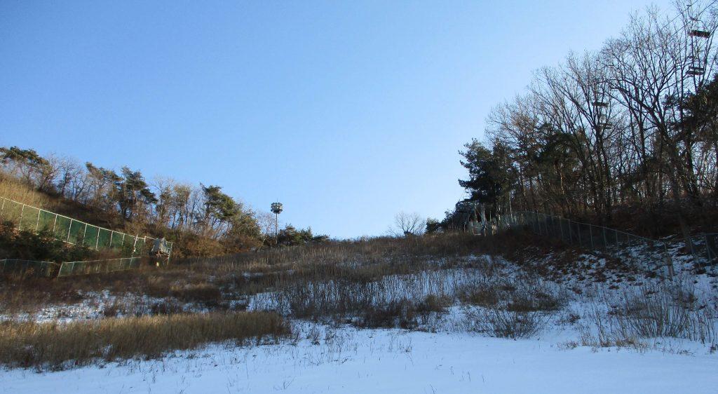 Overgrown piste at Yangji Pine Resort